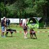 Sommerfest2016_90