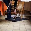 Trickdog Workshop_4