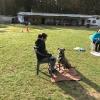 Trickdog April 2017_4